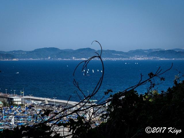E4300865_CameraRAW_2048_signed.jpg