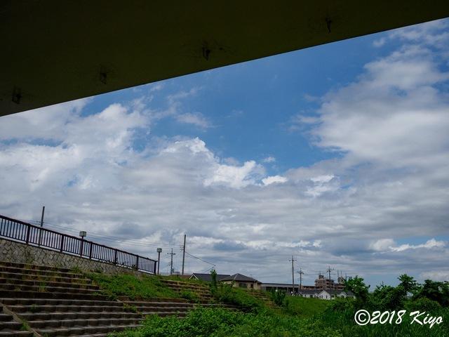 E5192680_CameraRAW_2048_signed.jpg
