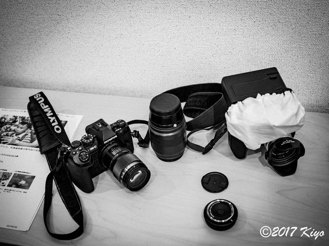 E6034106_CameraRAW_2048_signed.jpg