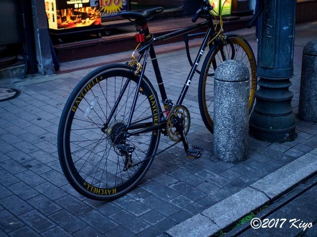 E6034161_CameraRAW_2048_signed.jpg