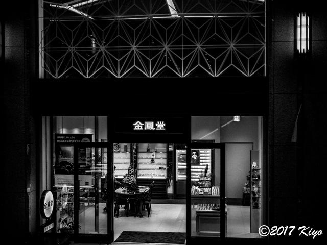 E7217920_CameraRAW_2048_signed.jpg