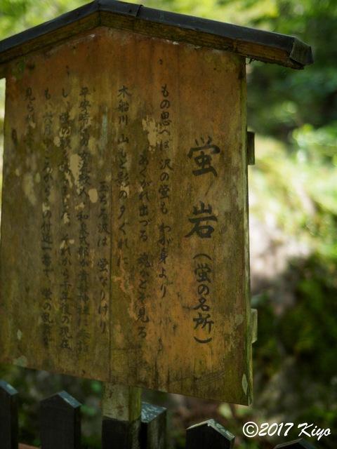E9293088_CameraRAW_2048_signed.jpg