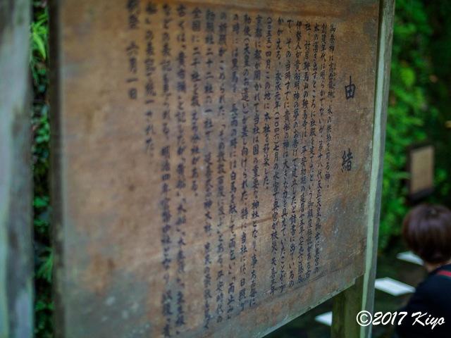 E9293269_CameraRAW_2048_signed.jpg
