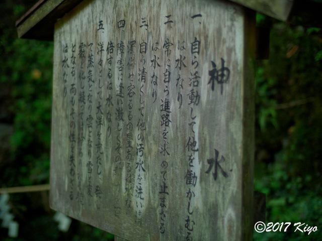 E9293272_CameraRAW_2048_signed.jpg
