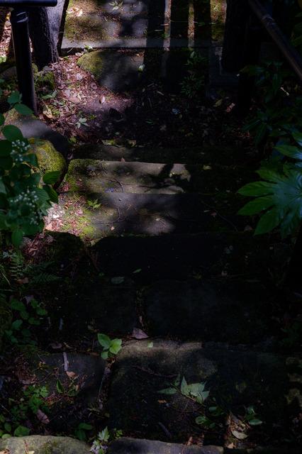 DSCF0962_CameraRAW_2048.jpg