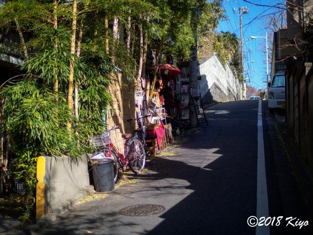 E1036758_CameraRAW_2048_signed.jpg