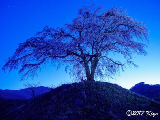 E4280434_CameraRAW_2048_signed.jpg