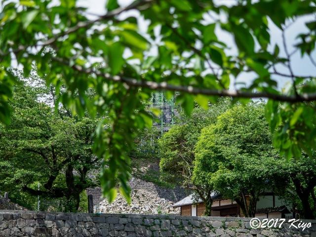 E5131310_CameraRAW_2048_signed.jpg