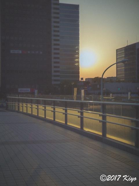 E5203313_CameraRAW_2048_signed.jpg