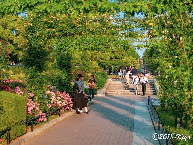 E6032888_CameraRAW_2048_signed.jpg
