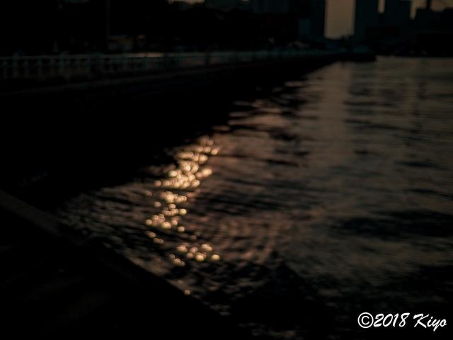 E6032954_CameraRAW_2048_signed.jpg