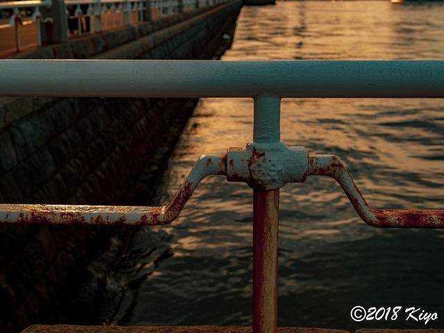 E6032960_CameraRAW_2048_signed.jpg
