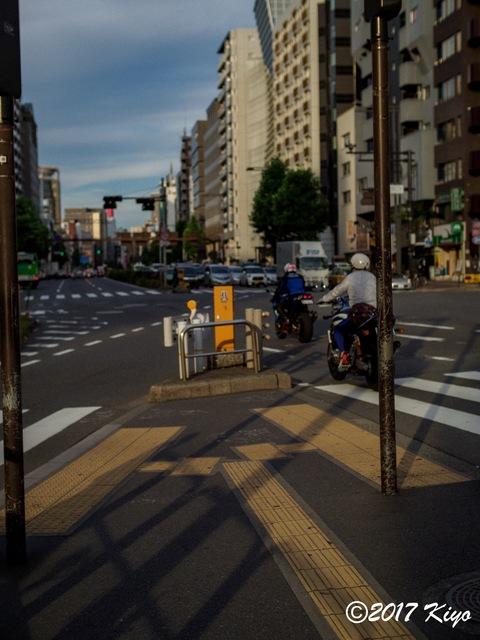 E7157059_CameraRAW_2048_signed.jpg