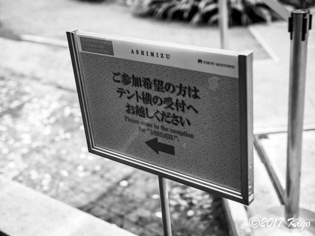 E7308331_CameraRAW_2048_signed.jpg