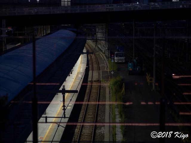 E8285125_CameraRAW_2048_signed.jpg