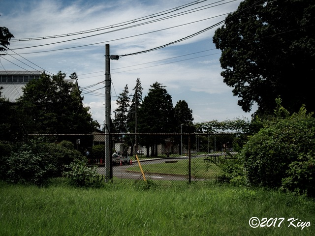 E9031099_CameraRAW_2048_signed.jpg