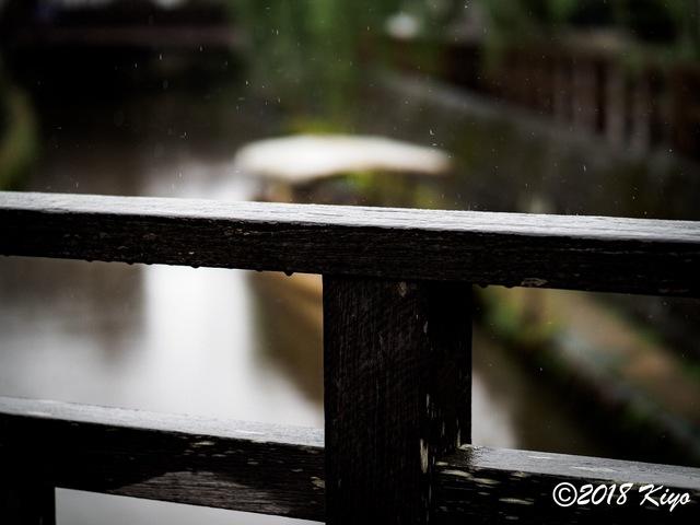E9156151_CameraRAW_2048_signed.jpg